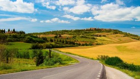 Sunny Day Country Road Wallpaper