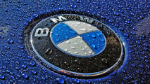 BMW Logo Blue Wallpaper Background Free