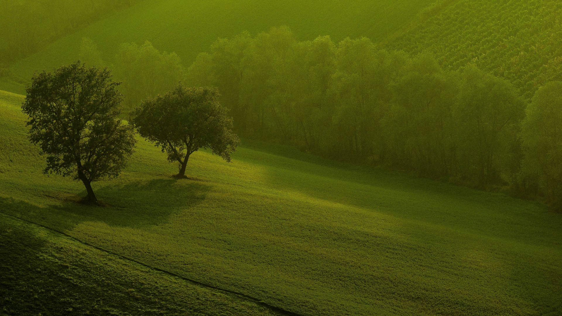 Wallpapers hd nature for windows 8