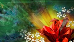 Amazing Flower Abstract 3D Wallpaper Photography
