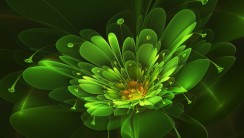 Green Flower Abstract Fresh New HD Wallpaper Best Quality