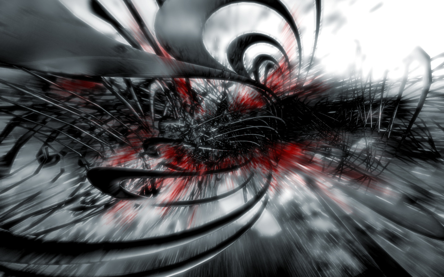 Black Red And White Abstract Wallpaper HD Picture Image Wallsev