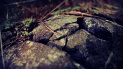 Stone Macro Photography Full HD Wallpaper Picture For PC Desktop