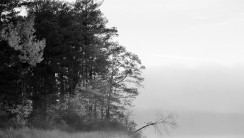 Foggy Lake Black And White Nature Picture Photo HD Wallpaper