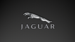 New Jaguar Logo HD Widescreen Wallpaper Background For PC Desktop