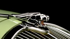 Elegant Jaguar Logo Photo Picture HD Wallpaper Image Gallery