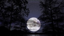 White Moon Night Nature Photography Picture HD Wallpaper Desktop