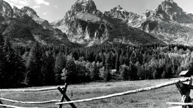 Mount Black And White Nature Photography Wallpaper HD Widescreen