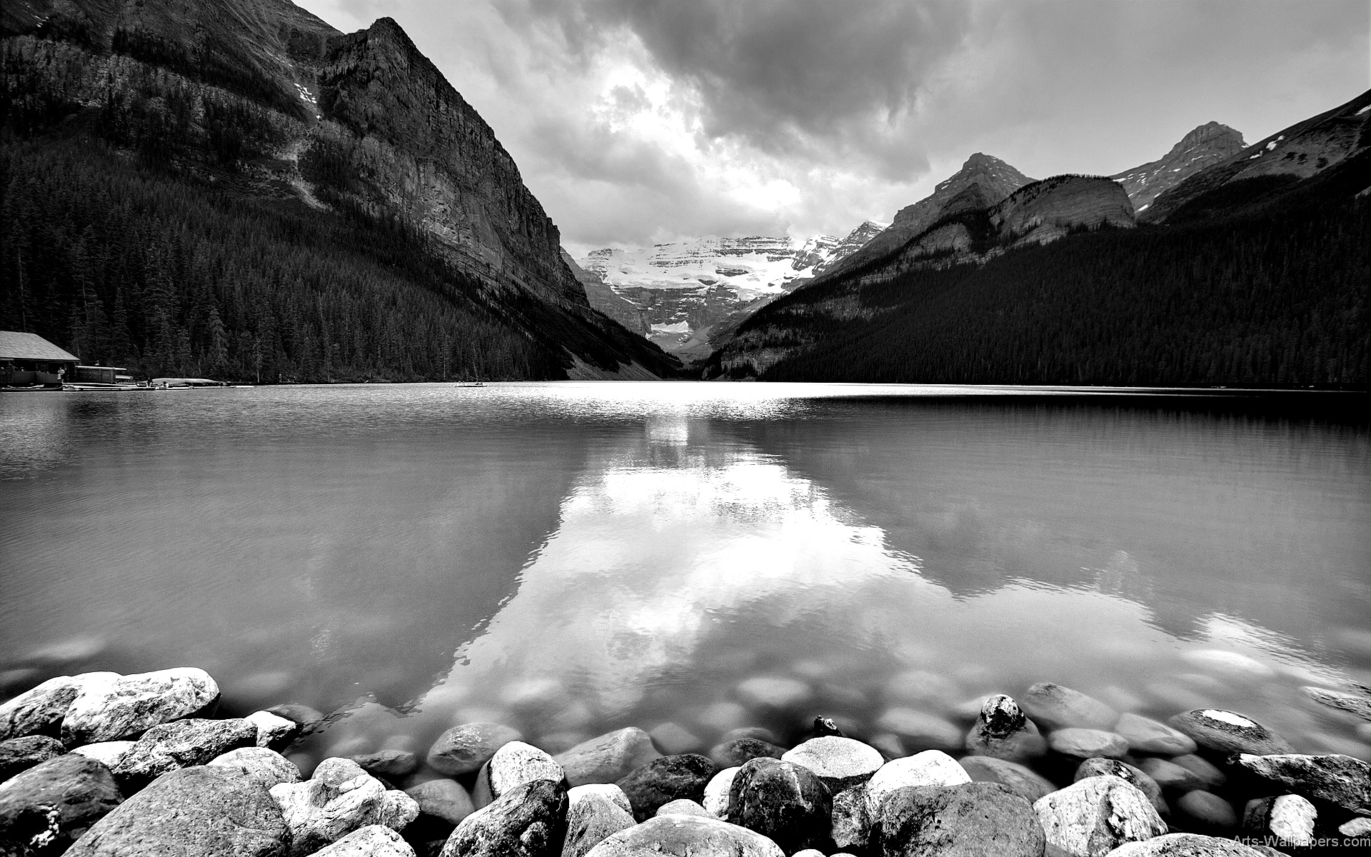 Beautiful nature hd wallpaper black and white free - Download white background hd ...