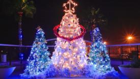 Beautiful Christmas Tree Lights Wallpaper HD Widescreen Desktop