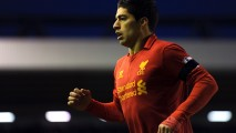 Luis Suarez Liverpool 2013 HD Wallpapers Photos Pictures Collections