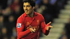 Luis Suarez Celebration For Liverpool Photo And Picture Sharing Free Download
