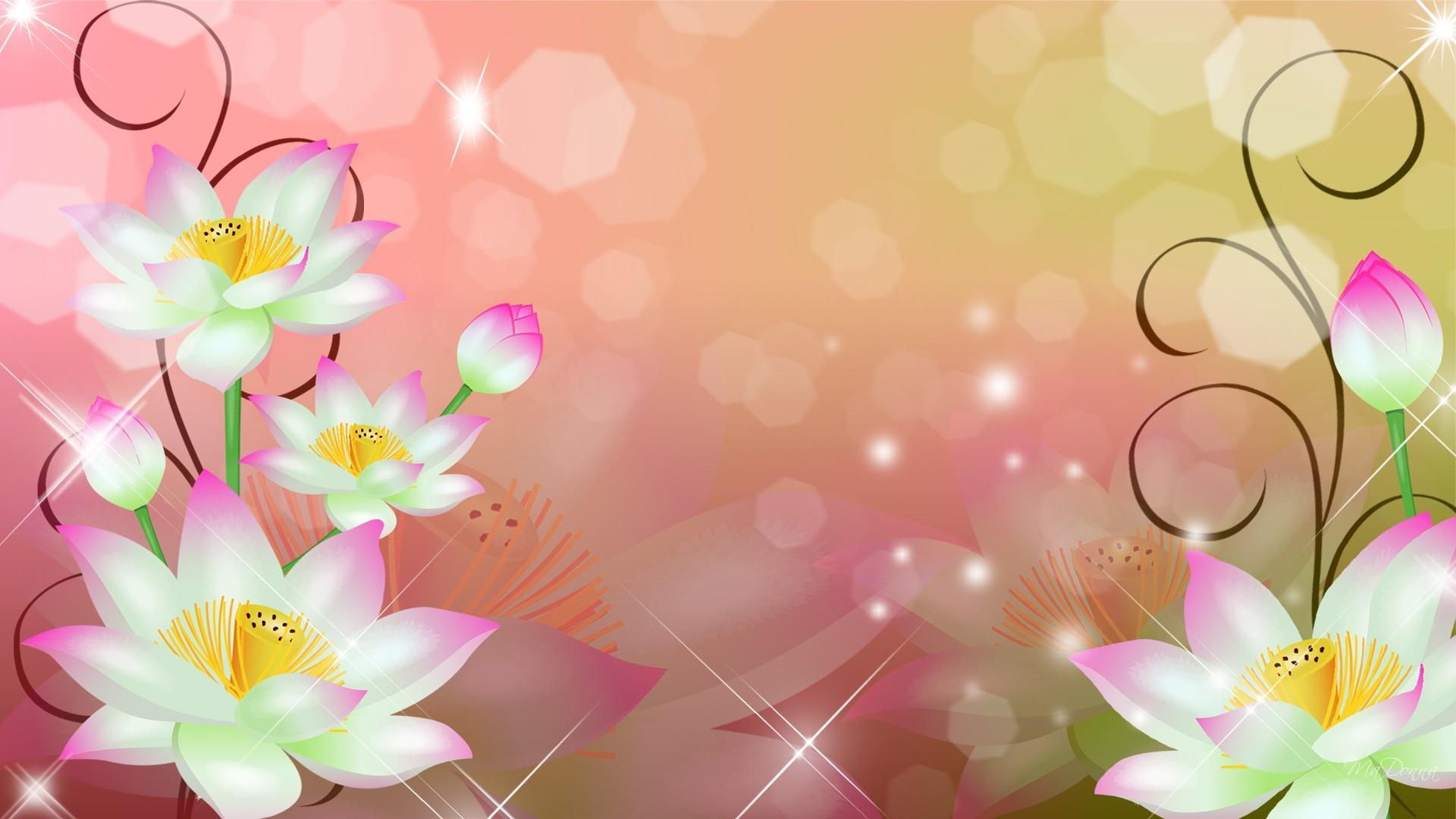 Abstract Design Flower Wallpaper: Beautiful White Flowers Abstract HD Wallpaper Image