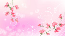 Pink Abstract Flowers HD Wallpaper Image Picture And Background