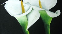 Wedding Flowers Using Calla Lilies Image Picture Wallpaper Backgorund
