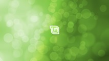 Beautiful Linux Mint Logo Image HD Wallpaper Picture And Desktop