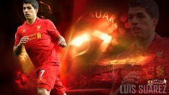 Luis Suarez Football Player For Liverpool Best HD Wallpapers 2013