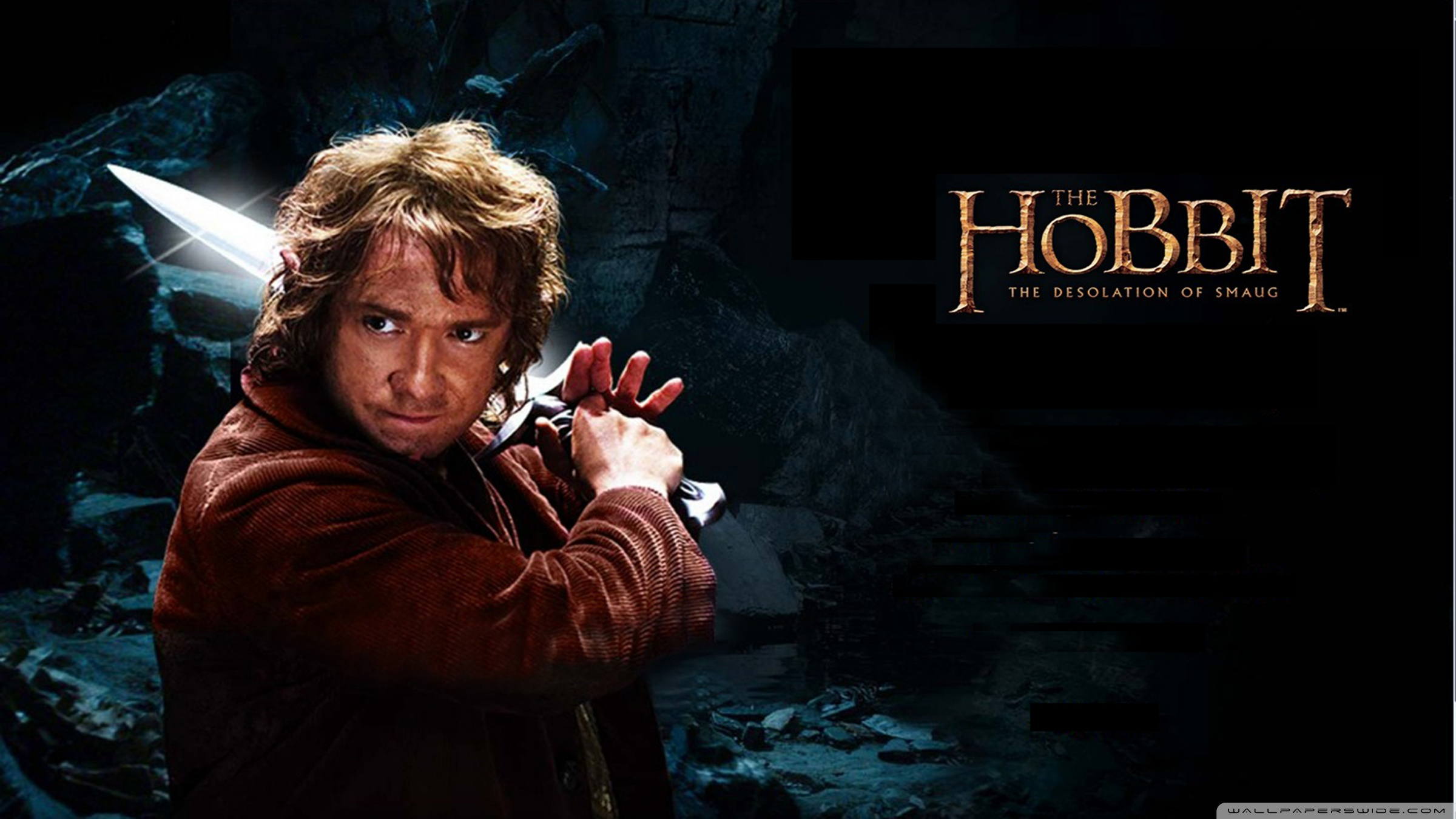 the hobbit the desolation of smaug hd wallpaper photo