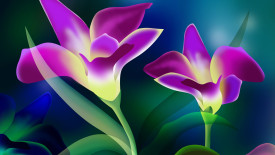 Beautiful  Purple and Yellow Flower Wallpaper