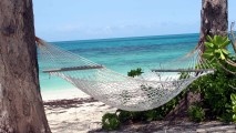 Hammock on the Beach HD Wallpaper