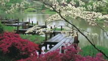 Japanese Garden and Pond HD Wallpaper