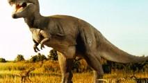 Tyrannosaurus Rex HD Wallpaper