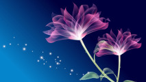 Flower Abstract HD Wallpaper