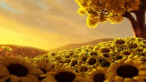 Sun Flowers with Yellow Sky HD Wallpaper