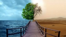 Digital Art Nature Scene HD Wallpaper
