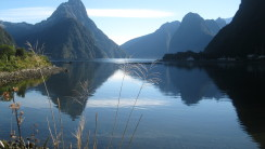 Milford Sound New Zealand HD Wallpaper