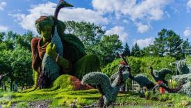 Montreal Botanical Garden HD Wallpaper