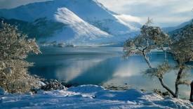 Winter Scene HD Wallpaper
