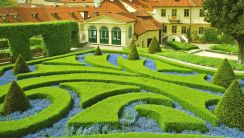 Blue and Green Garden HD Wallpaper