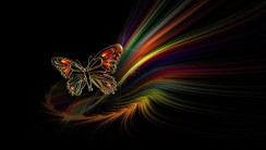 Butterfly Abstract HD Wallpaper