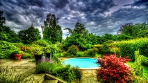 Garden Before the Storm HD Wallpaper