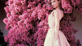 Audrey Hepburn 1955 HD Wallpaper