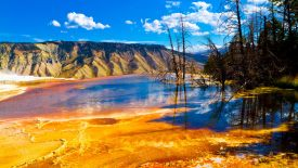 Yellowstone National Park HD Wallpaper